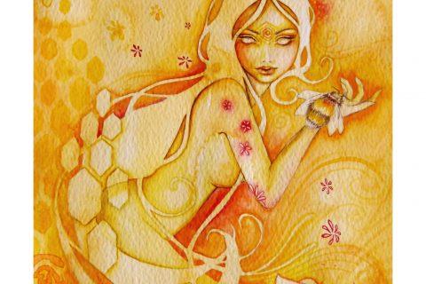 'Blossom'